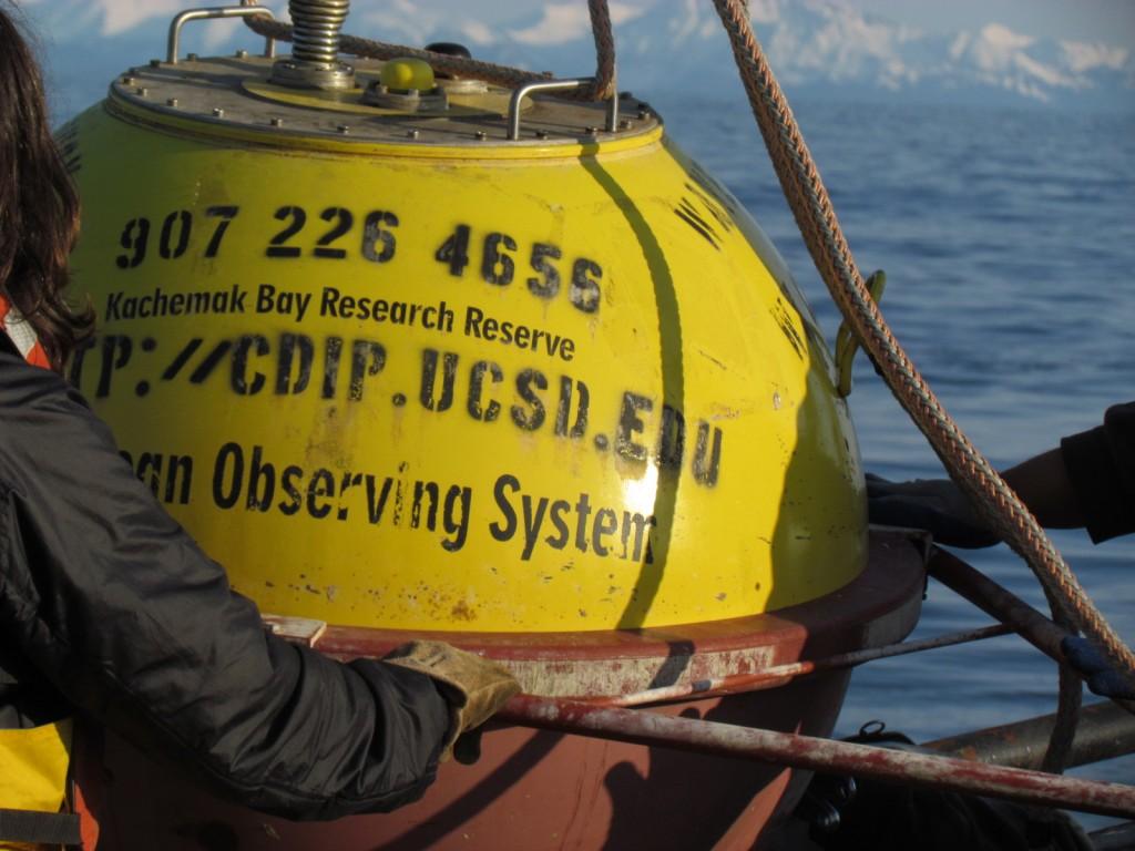 Wave Buoy Returns To Lower Cook Inlet Alaska Ocean