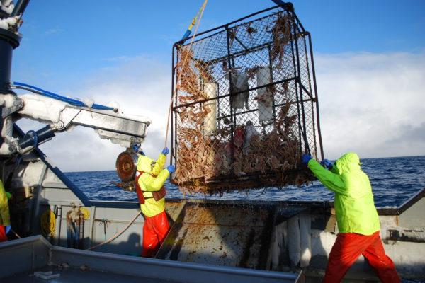 Bering Sea Crabbers Discuss OA