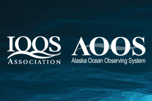 AOOS Needs User Input
