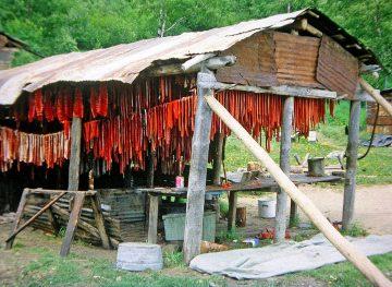 Salmon Drying